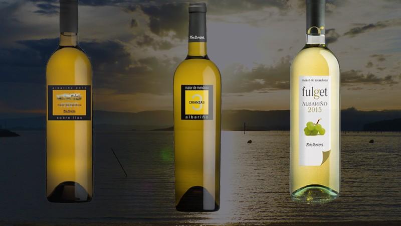 Puntuaciones Maior de Mendoza Guias Españolas de Vinos 2016